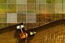 Криптовалюты и сельское хозяйство