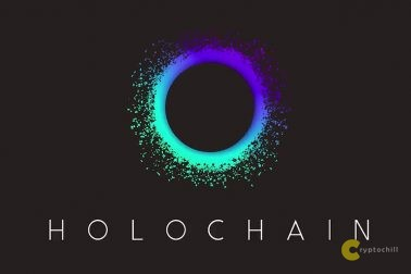 Holochain Hot - логотип